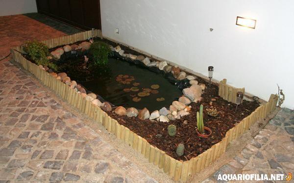 mini lago jardim aquariofilia