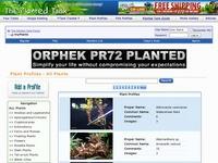Planted Tank - Plants Profiles Photo