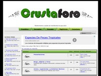 crustaforo.com Photo