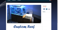 Custom Reef Photo
