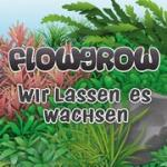 Flowgrow Photo