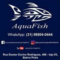 Aquafish17
