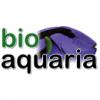 bioaquaria