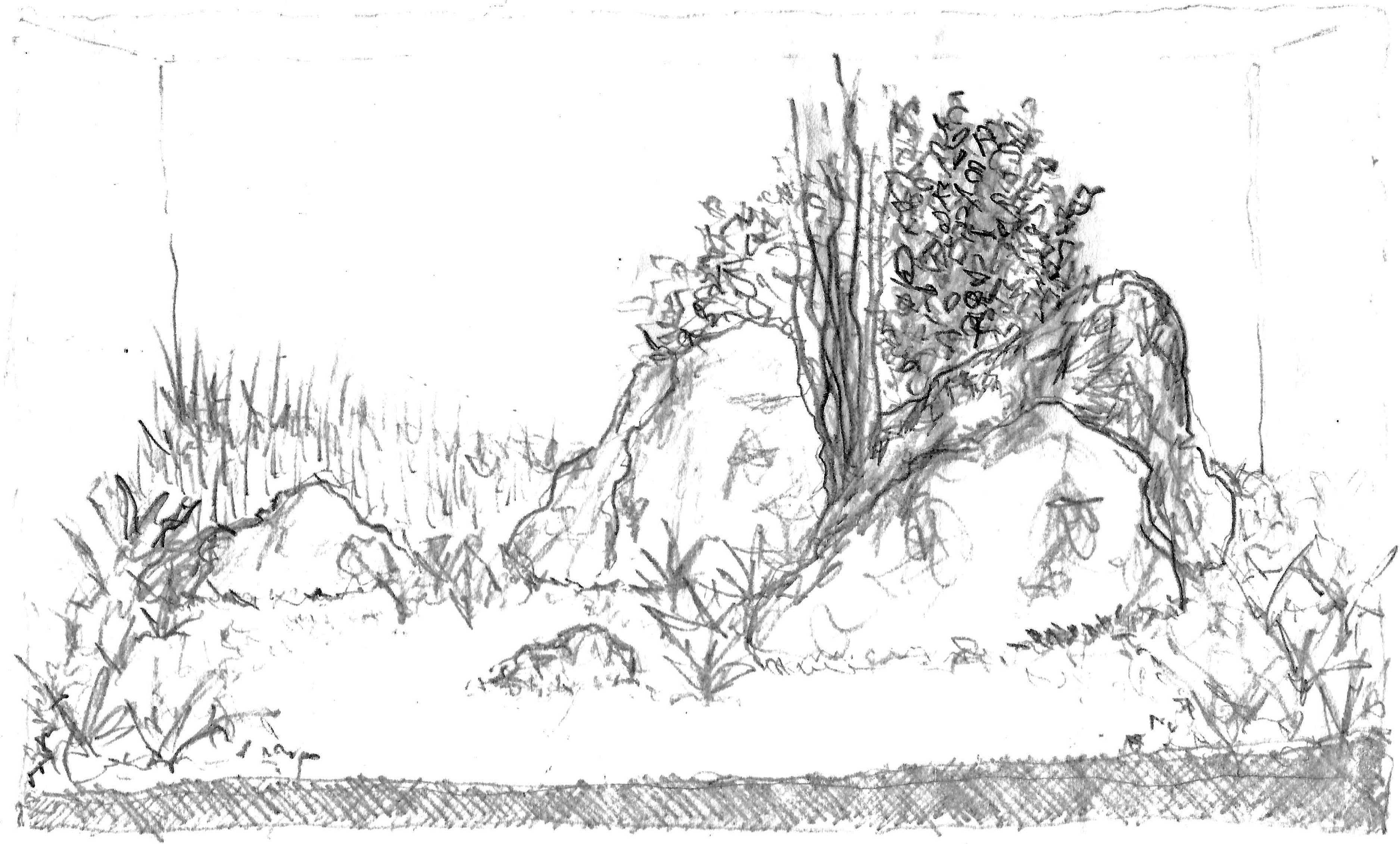 60-0-desenho2.jpg