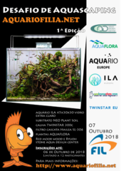 Desafio aquascaping aquariofilia.net