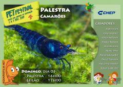 Cartaz-Camar-es-2.jpg