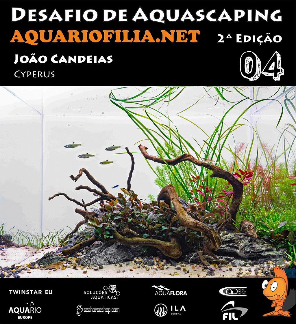 #4 João Candeias.jpg