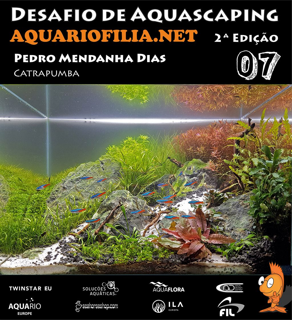 #7 Pedro Mendanha Dias.jpg