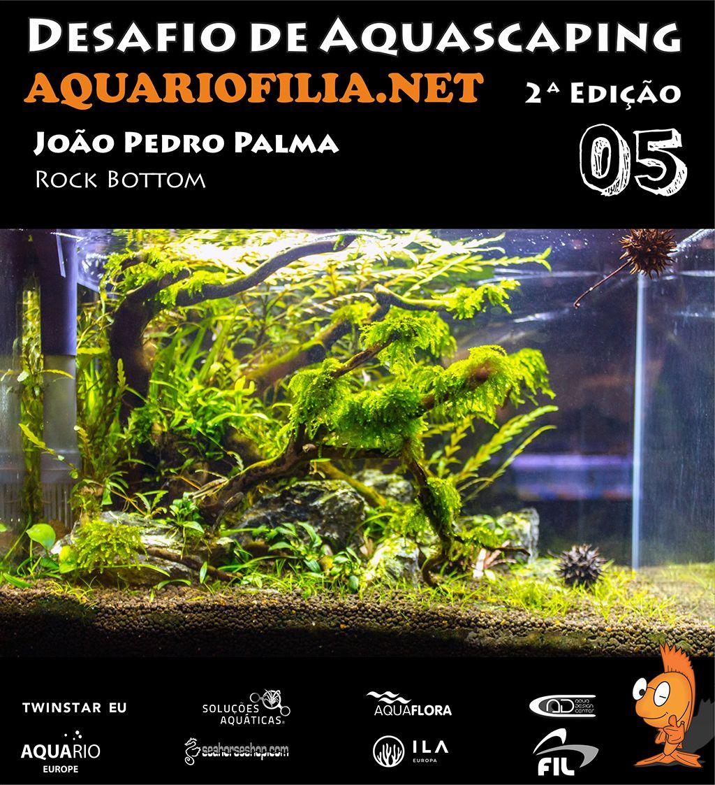 #5 João Pedro Palma.jpg