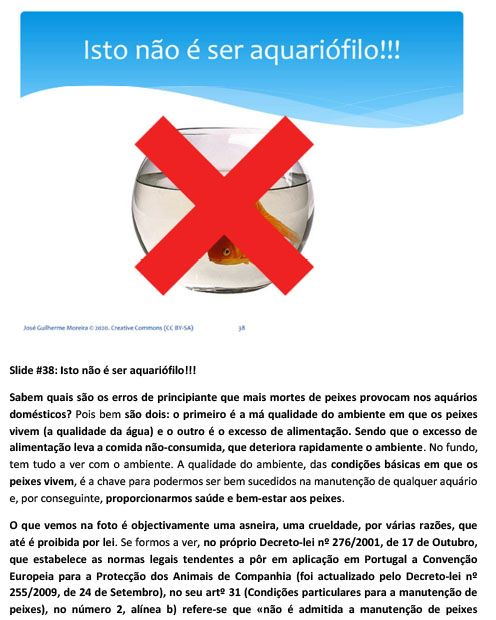 aquariofilia-hobby_conservacionismo-39.jpg