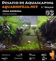#3 João Abóbora.jpg