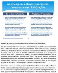aquariofilia-hobby_conservacionismo-29.jpg