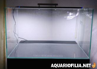 large.1153082478_A-Aquario.JPG.b39313130