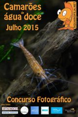 Poster Concurso Julho 2015