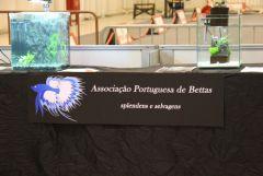 Associação Portuguesa de Bettas na PETFESTIVAL 2012