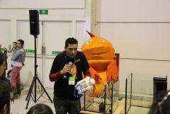 """Workshop """"iniciação à água salgada"""" - Hugo Costa Coelho na PETFESTIVAL 2012"""