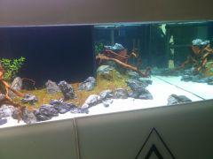 ReefQuest