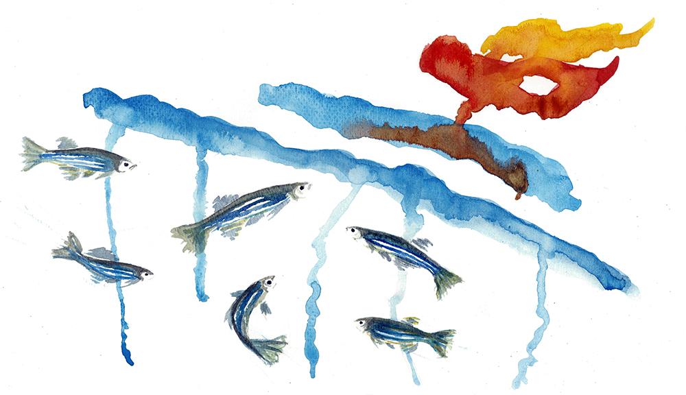 Illustration_fish_also_need_friends-1.jpg